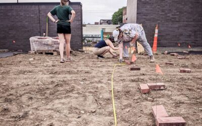 Urban Harvest STL Creates Social Justice Through Sustainable Farming